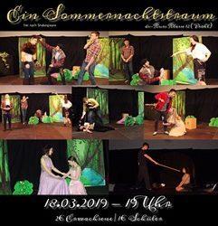 Theateraufführungen der DS-Kurse